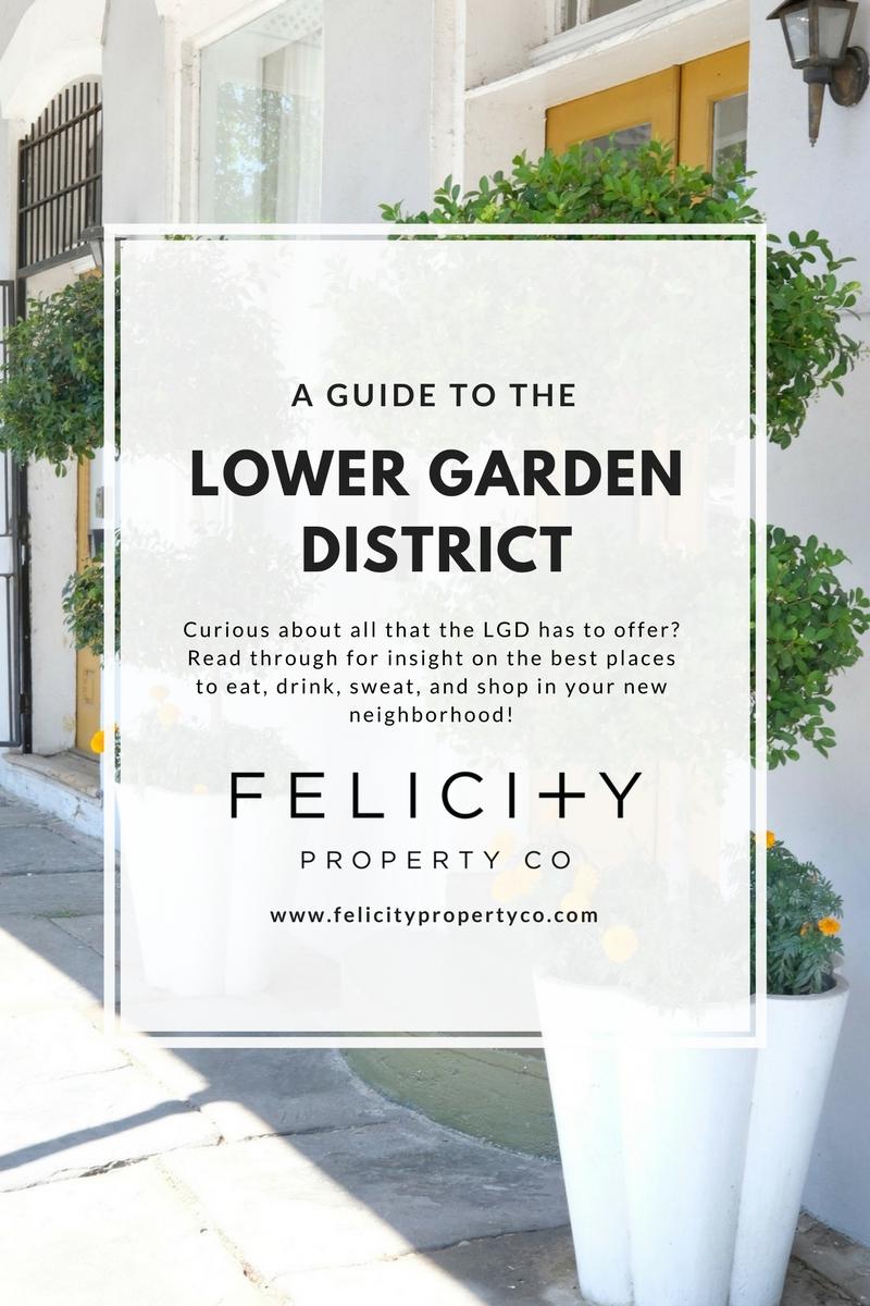 Lower Garden District Guide